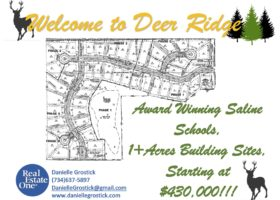 Deer Ridge Subdivision | Saline, Michigan