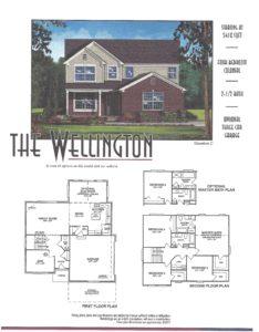 wellingtonplan