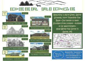 Deer Ridge Subdivision | Saline, Michigan